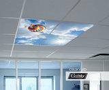 Luchtballon foto systeemplafond ceilsky