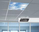 Fotoplafond ceilsky