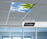 ceilsky foto in plafond met verlicht