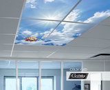 Luchtballon fotoplafond ceilsky