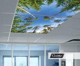wolken fotoplafond ceilsky