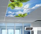 inbouw foto plafond ceilsky