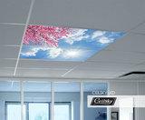 wolkendek aan plafond met licht