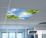 foto op plafond met wolken