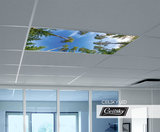 verlichting met foto plafond