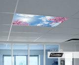 led plafond met foto