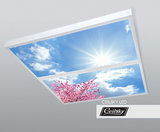 foto op plafond ceilsky