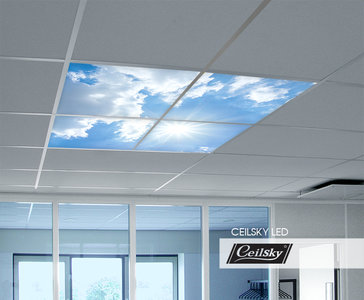 Luchtplafond LED ceilsky