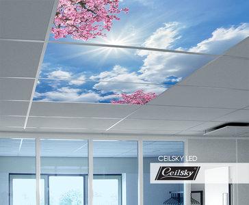Ceilsky fotoplafond